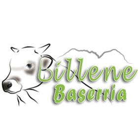 BILLENE BASERRIA